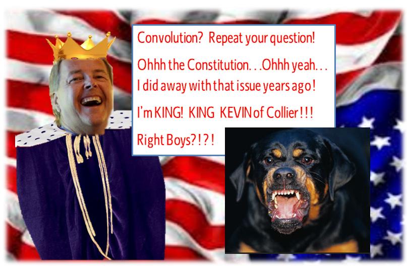 The Florida Constitution Online Sunshine